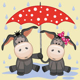 Two Donkeys with umbrella Royalty Free Stock Photography