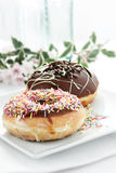 Two Donuts Stock Images