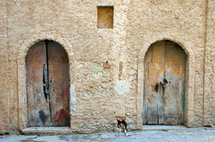 Two doors stock images