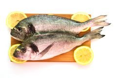Two dorado on wooden board. Two dorado with lemon on wooden board Royalty Free Stock Photography