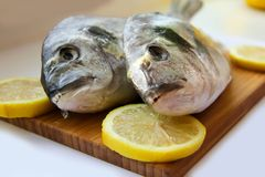 Two dorado on wooden board. Two dorado with lemon on wooden board isolated Stock Photo