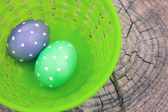 Two dotted eggs in plastic basket Stock Image