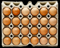 Two dozen brown eggs Royalty Free Stock Photo