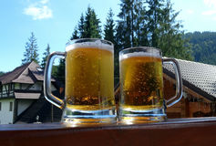 Two draft beer on the wooden desk at courtyard of country brevery Royalty Free Stock Photography