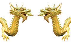 Two Dragon Royalty Free Stock Image