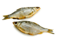 Two dried fish Royalty Free Stock Images