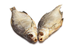 Two dried fishes Stock Images