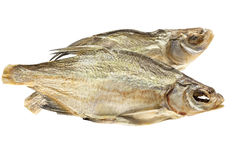 Two dried fishes. Isolated objects on a white background Royalty Free Stock Photography