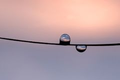 Two droplet hanging in a string. And reflecting sunset scenery Royalty Free Stock Photography