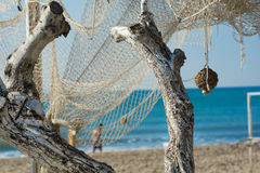 Two dry white branches and fishing net stock image