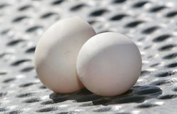 Two duck eggs royalty free stock images