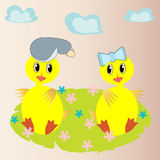 Two duckling on a flower meadow. Stock Photography