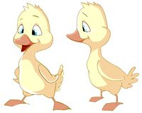 Two ducklings Royalty Free Stock Photo