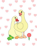 Two ducks in love stock illustration