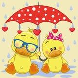 Two Ducks with umbrella stock illustration