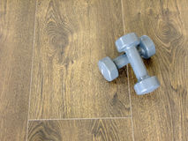 Two Dumbbells on the Floor. Two grey Dumpbells are put on the dark wooden Floor Stock Photo