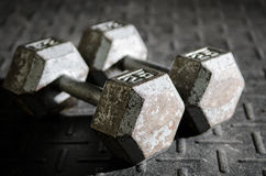 Two dumbbells on the floor Stock Photo