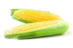 Two ear of corn with leaves isolated on white background Royalty Free Stock Photos