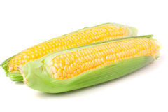 Two ear of corn with leaves isolated on white background Stock Photography