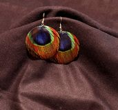 Two earrings with multi color peacock feather design Royalty Free Stock Photography