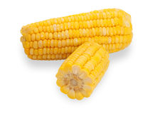 Two ears of corn, one cut, isolated Royalty Free Stock Photography