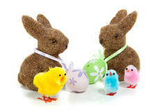 Two easter bunnies. With painted eggs and colorful chicks isolated over white royalty free stock photography