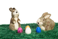 Two Easter bunnies Royalty Free Stock Photo