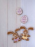 Two Easter Bunny and two violet eggs cookies Royalty Free Stock Photos