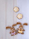 Two Easter Bunny and two yellow flowers cookies Royalty Free Stock Images
