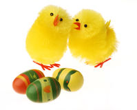Two Easter Chicken communicating Stock Photo