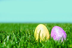 Two Easter eggs on the green grass and sky background Stock Image