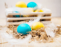 Two Easter eggs in the nest on rustic wooden background. Royalty Free Stock Photography