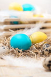 Two Easter eggs in the nest on rustic wooden background Stock Photos