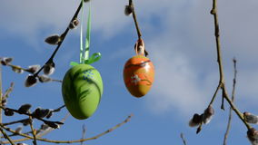 Two easter eggs  on willow branch stock footage