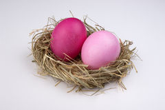 Two easter pink egg on bird nest isolated Stock Photos