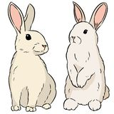 Two easter rabbits hand drawn colorful doodle vector illustration