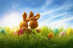 Two easter rabbits. Sitting on grass royalty free stock photography