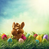 Two easter rabbits Royalty Free Stock Image