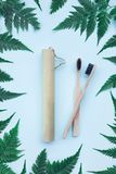 Two eco bamboo toothbrushes. royalty free stock photo