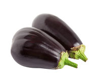 Two eggplant. royalty free stock images