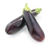 Two eggplant Stock Photography