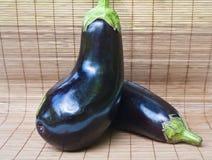 Two eggplants Stock Images