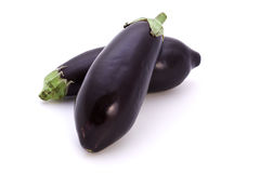 Two eggplants. Two purple eggplants on a white background stock photos