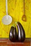 Two eggplants Stock Image
