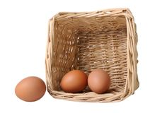 Two eggs in a basket and one separately Stock Photography