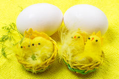 Two eggs and chickens Royalty Free Stock Images