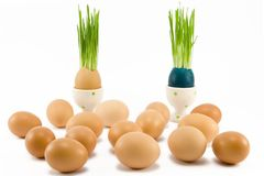 Two eggs in egg-cup Royalty Free Stock Photos