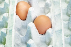 Two Eggs in empty  package Stock Photography