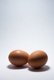 Two Eggs Royalty Free Stock Photos