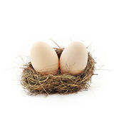 Two eggs inside the nest Royalty Free Stock Photos